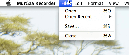 Save or Load Recorded Keystrokes from File Menu